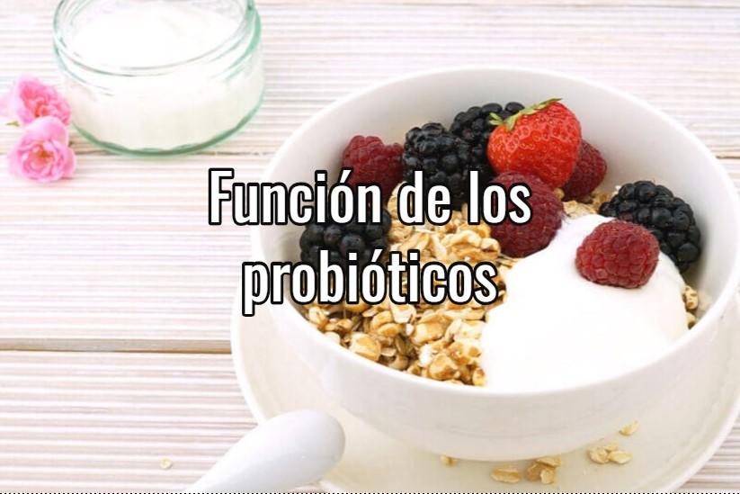 para que sirven los probioticos